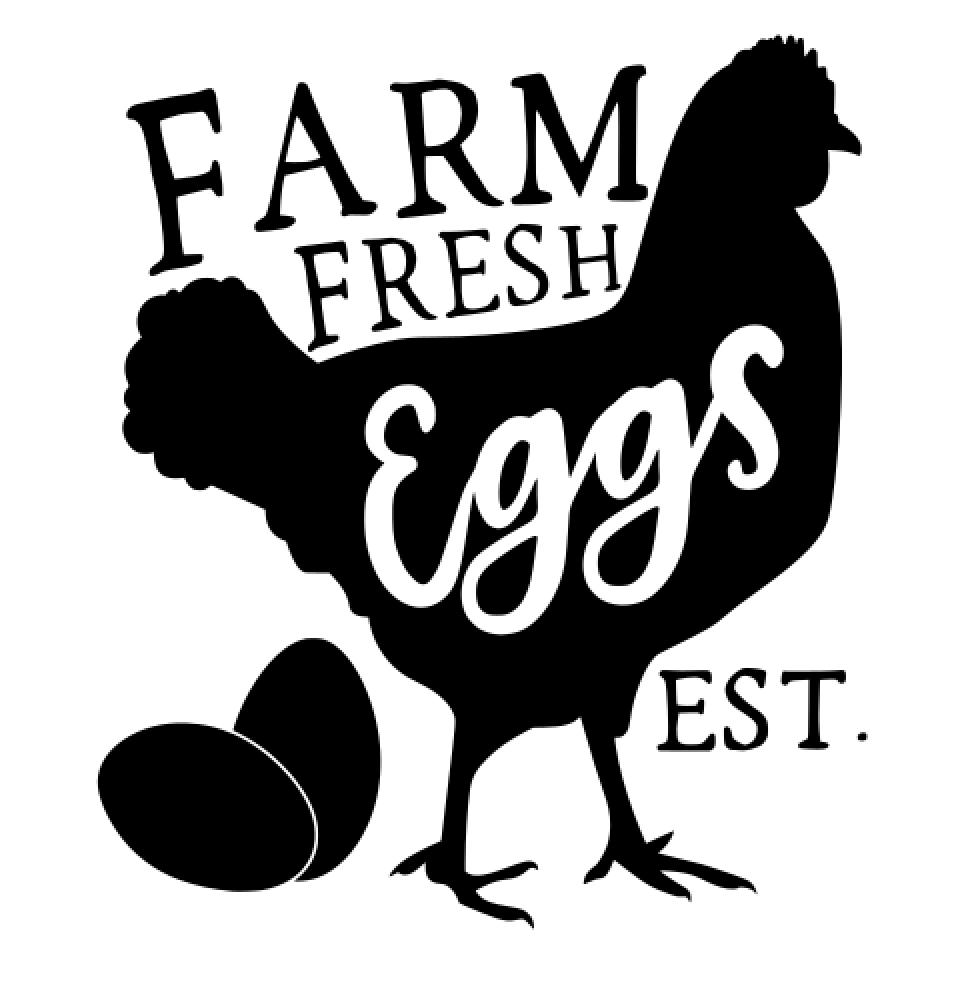 19 Farm eggs Fresh